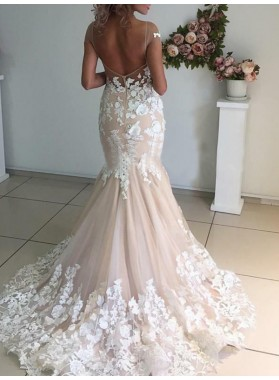 Mermaid Tulle With Lace Appliques Capped Sleeves Champagne Wedding Dresses 2021