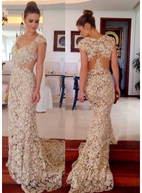Queen Anne Zipper Natural Waist Mermaid/Trumpet Lace Prom Dresses