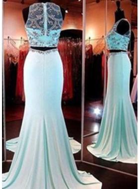 Mermaid/Trumpet Sleeveless Natural Zipper Prom Sweep/Brush Train Prom Dresses