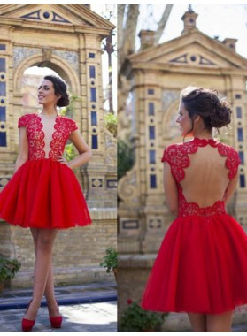 A-Line Princess Short Sleeves Scoop Lace Short Tulle Dresses